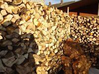 hardwood logs kindleing seasond dry logburner firewood