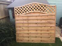 1 Fence panel