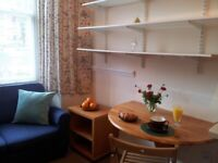 Single Studio New Decoration Zone 2