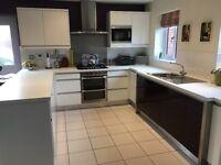 High gloss white and aubergine kitchen