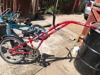 tag along trailer bike
