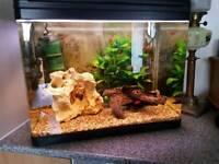 90 ltr fish tank