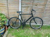 Raleigh mountain bike free delivery south Manchester