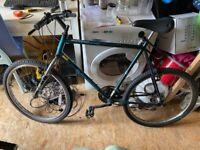 Raleigh Bicycle (mens