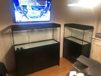 Fluval Roma 240 tank & cabinet (less than 6 months old, upgraded filter!)