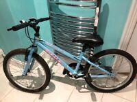 Kids 20 inch wheel mountain bike idea xmas gift