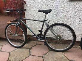 Specialized Mountain bike Hard Rock Model Shemano Brakes adult size Excellent condition