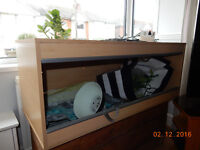 Terrarium (in excellent condition) for reptiles for urgent sale before Christmas !!