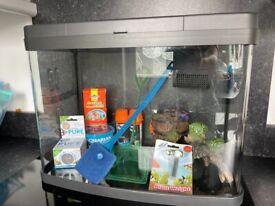 Love Fish 40 litre Aquarium/fish tank with accessories