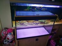 *FLUVAL ROMA 120*FISH TANK AND STAND WITH BUILT IN LIGHT*