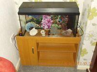 Jewel 90 Litre Fish Tank