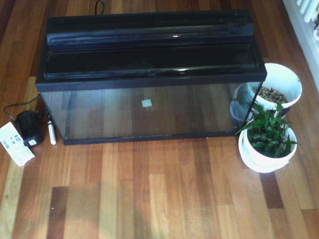 """Fish Tank 30"""" with all you need to set it up, gravel, filter, heater, ornamental log, java fern WOW!"""