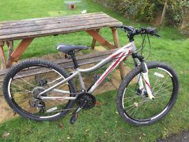 Specialized Myka mountain bike XS frame