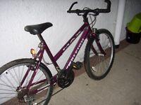 Ladies/teenagers Raleigh mountain bike