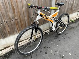 SPECIALIZED RockHopper Mountain bike 2002 retro edition