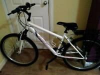 Apollo Elusion ladies mountain bike