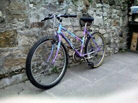 RALEIGH CASSIS PURPLE GIRL/LADIES BICYCLE