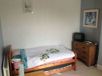 Sunny, comfortable double room in large house in Greenbank - suitable for student or professional