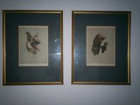 Alice BarnWell Signed Colored Etchings Dogs Heads