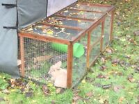 Rabbit Hutch and Insulated Cover and Run (big enough for 2 rabbits)