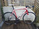Basso Laguna Full Carbon Road Bike XL 59cm Fast MicroTech Lightweight Wheels Campagnolo Veloce Gears