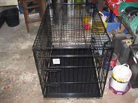 medium sized dog , pet cage