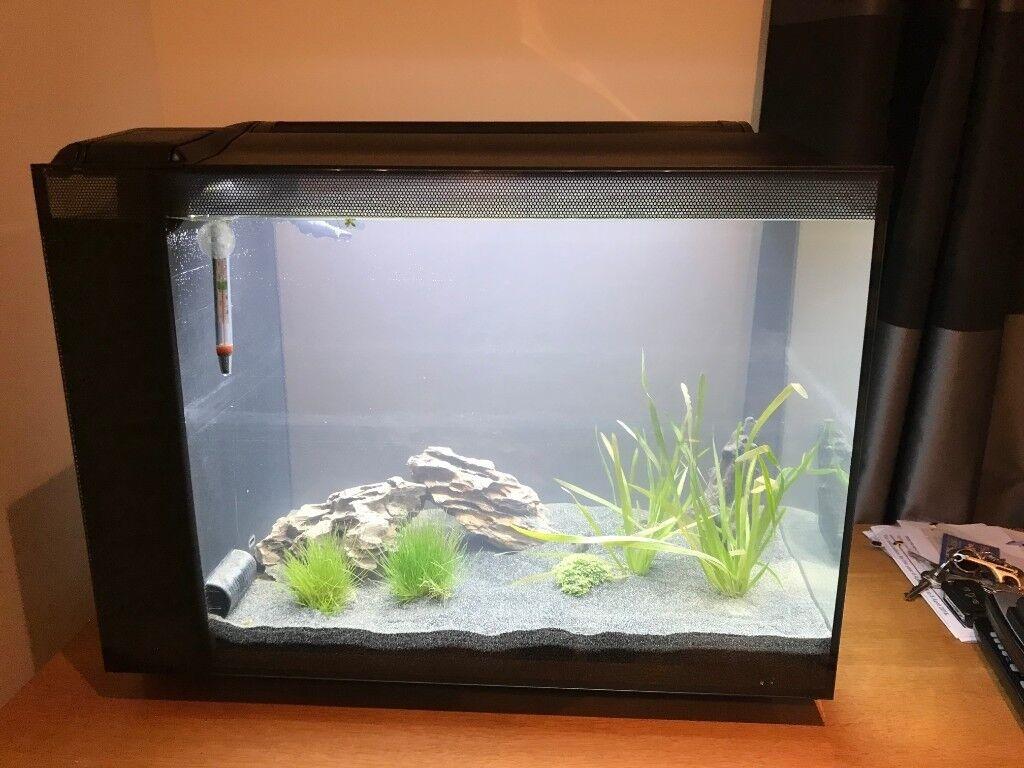 Pet Supplies Fluval Spec 60l Freshwater 60 Aquarium Beicare Co Nz