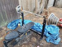 Olympic Bar, Weights and Adjustable Bench