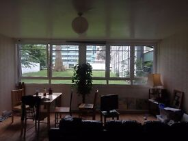 Lovely flat in camberwell with spacious kitchen/dinning room - good for creatives