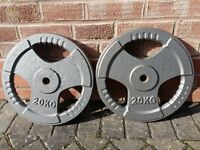 BODY MAX 20KG WEIGHT PLATES