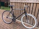 Single speed bike 58 cm Alloy frame and 700cc wheels.
