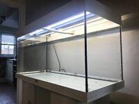 Juwel RIO 180 Aquarium & Base unit with T5 lighting, Heater and Aqua one 1250.