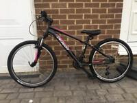 """Specialized Hotrock 24"""" bike"""