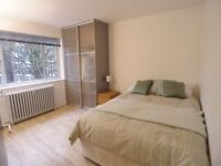 Quiet Double room in professional house-share by park