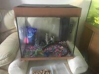 200L Jewel fish tank (with marine set up)