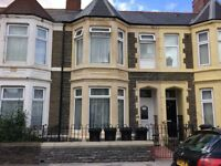 Cathays one bedroom flat to let