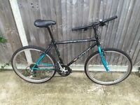 Mens Mountain bike Carrera Ideal for student