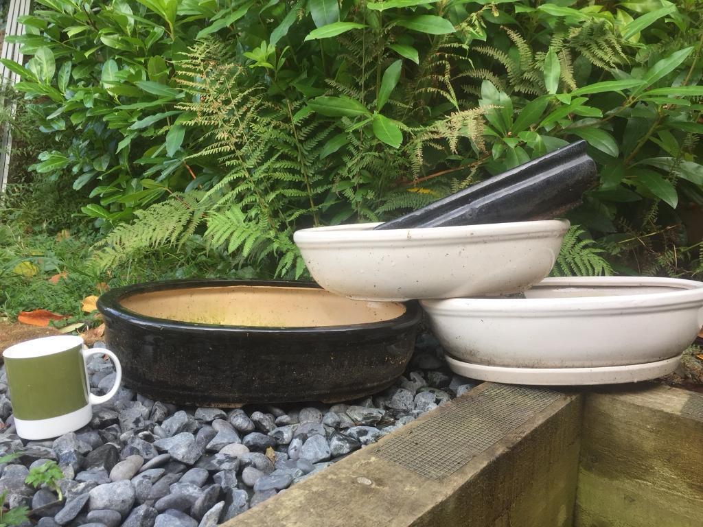 Large Ceramic Bonsai pots