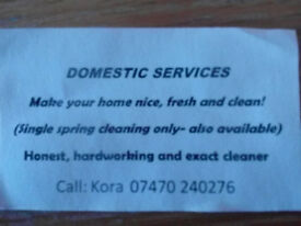 Domestic cleaning.