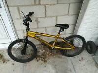 SilverFox Bullion BMX