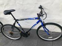 Trailblazer Limited Jupiter Mountain Bike