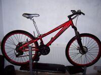 mans downhill mountain bike
