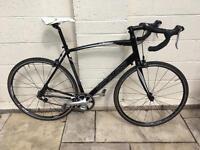 Specialized Single Speed Bike (58cm)