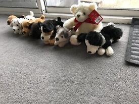 Selection of child's cuddly keel dog toys