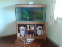 Large 90 gallon Aquarium Tank, plus complete accessories.