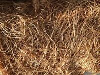 10kg Bail of Wood Wool for packaging