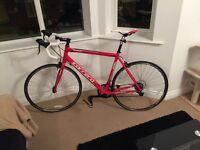 Men's Carerra Road Bicycle, brand new