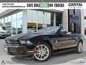 2010 Ford Mustang V6 * Leather-Low Low Kms- Mint*