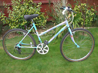 RALEIGH CAMERO MTB ONE OF MANY QUALITY BICYCLES FOR SALE