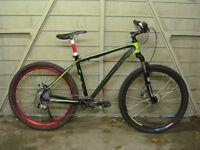 Windspeed Race Series WSR 701 mountain bike MTB XC Custom